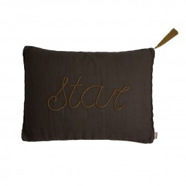 COUSSIN TAUPE 40X30 CM - STAR - NUMERO 74