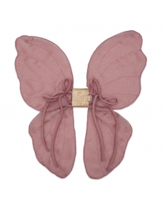 ailes de fée - rose