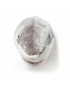 TROPHEE REQUIN DE FACE - JACK - WILD AND SOFT