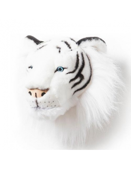 TROPHEE TIGRE BLANC - ALBERT - WILD AND SOFT