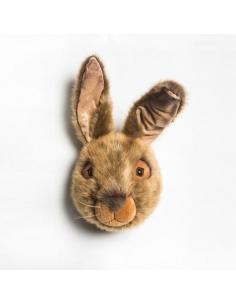 Hare Trophy - Wild & Soft
